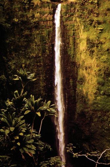 Akaka Falls State Park, Hawaii, November 1973