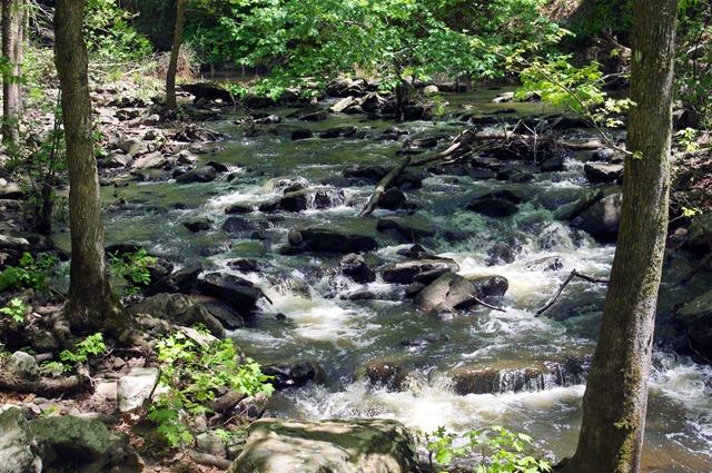 Cedar Creek, Cedar Falls Trail, Petit Jean State Park, Arkansas