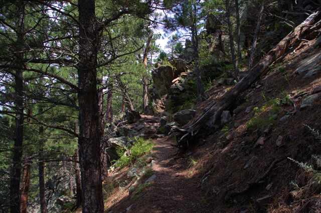 Rankin Ridge trail, Wind Cave National Park, South Dakota, August 8, 2014