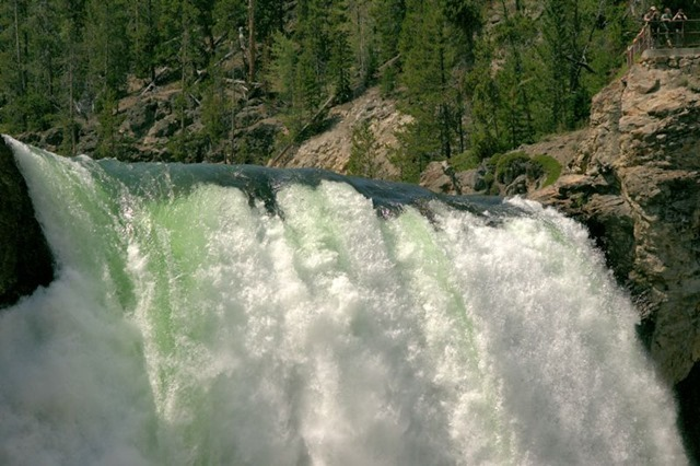 Lower Falls of the Yellowstone, Grand Canyon of the Yellowstone, Yellowstone National Park, Wyoming, August 17, 3014
