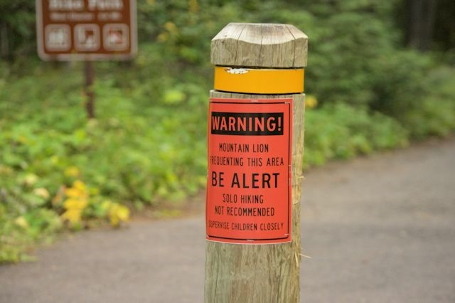 Mountain Lion warning, Apgar Village, Glacier National Park, Montana, August 28, 2014